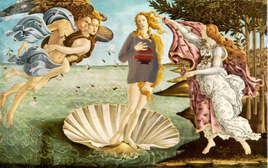 pull seigle sur Vénus de Boticelli